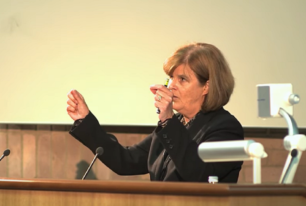A screenshot of Professor Dame Linda Partridge lecturing at the Academy of Medical Sciences Sackler Lecture in 2012.